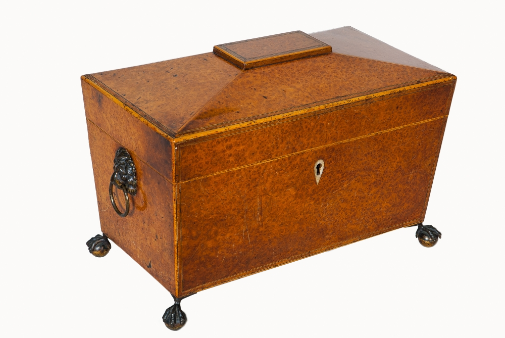 A Regency Burr Yewwood Sarcophagus shaped Tea Caddy